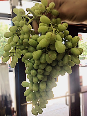 A Big Bunch of Sour Grape at Pars Market LLC Columbia Maryland 21045